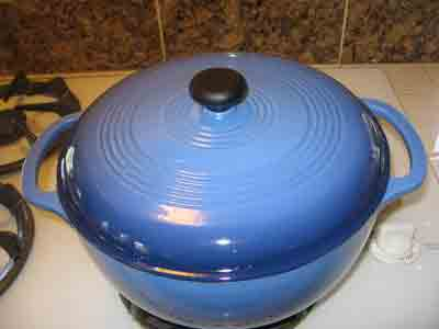 Totally gratuitous picture of my pretty new blue enameled cast-iron pot.