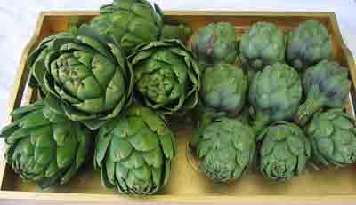 Artichokes for moschari-me-agkinares